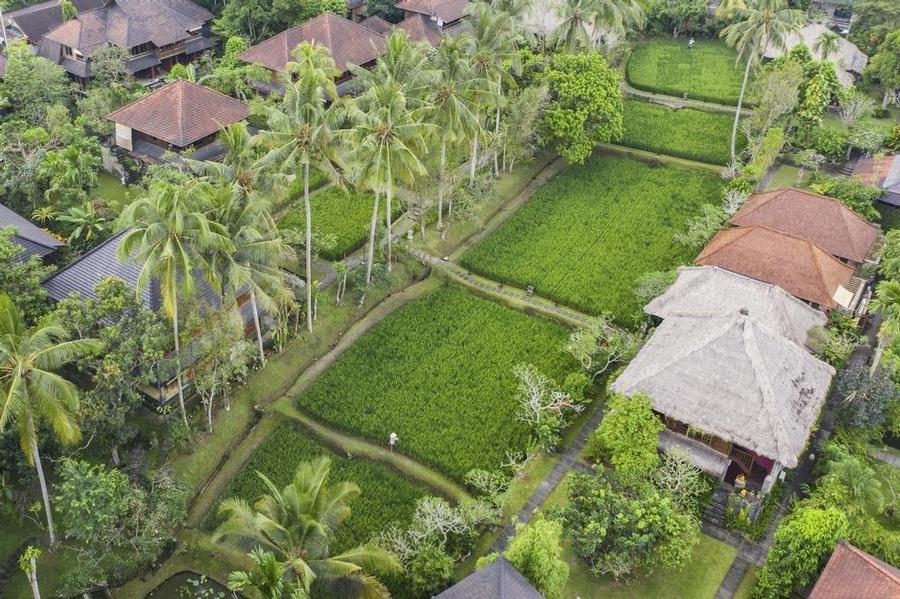 ANANDA UBUD RESORT