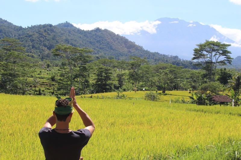 Immersion Dans La Vie Balinaise  <br>1 J